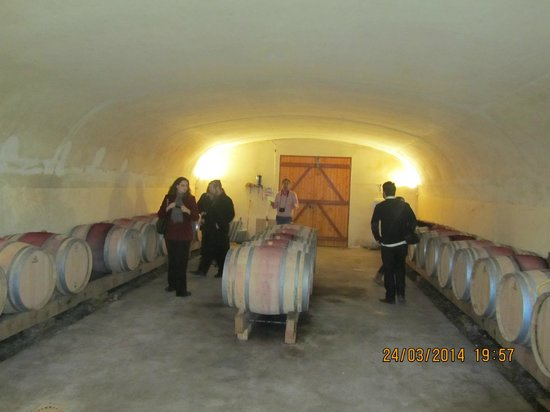 Paris Wine Day Tours: Traditional Wine Makers