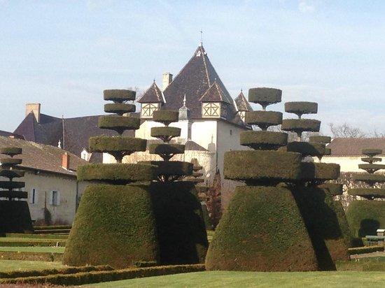 Chateau de Pizay : le jardin à la française
