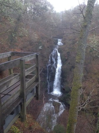 Black Spout Wood: Amazing view and sound