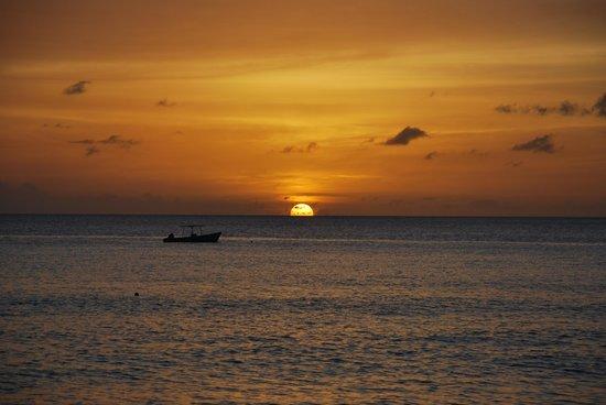 Crystal Cove by Elegant Hotels: Il tramonto dalla spiaggia