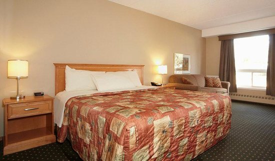 Colonial Square Inn & Suites: Single Guest Room