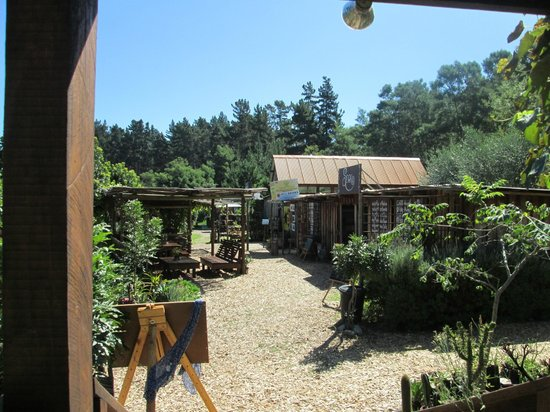 Timberlake Organic Village: Nature village at its best