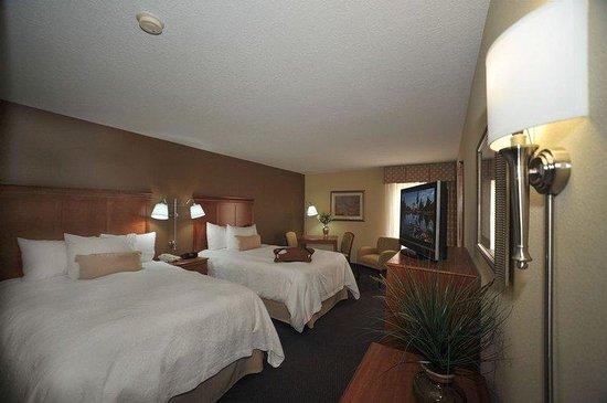 Hampton Inn Sault Ste Marie: Guestroom
