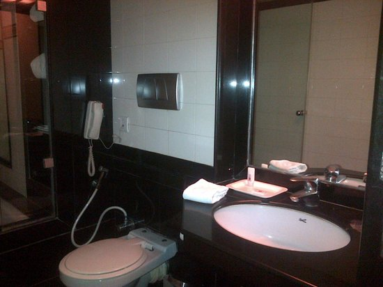 Ramee Guestline Dadar Hotel: Bathroom