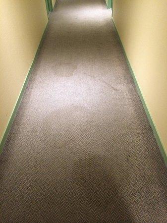 Hotel Novalis : Couloir 4