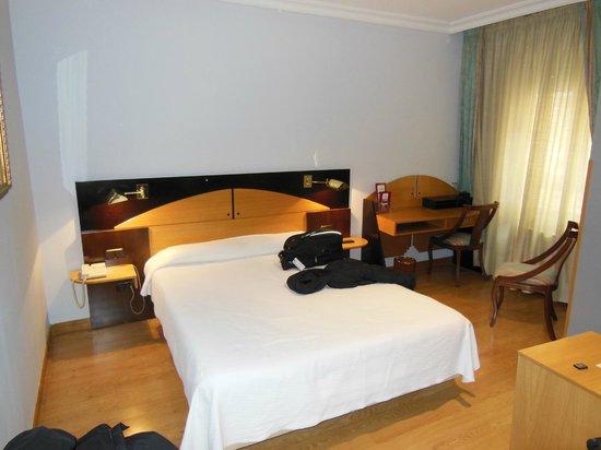 Hotel Corona de Castilla: Room