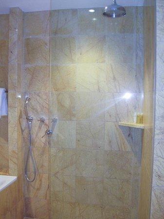 Regent Warsaw Hotel: The shower
