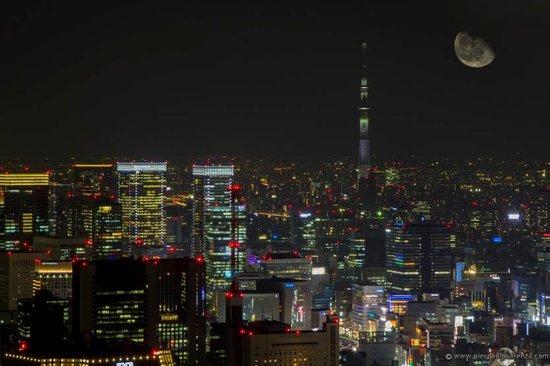 The Prince Park Tower Tokyo: vista da sopra la torre in notturna