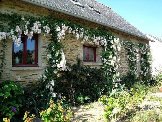 Guegon, France: La maison en été / The house in summer