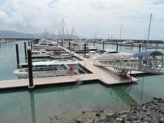 Seabreeze Tourist Park Airlie Beach : View from the walking trail starting opposite the Seabreeze