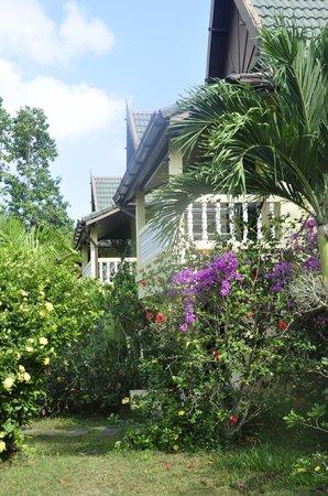 Chez Charly Bungalow: Les bungalows
