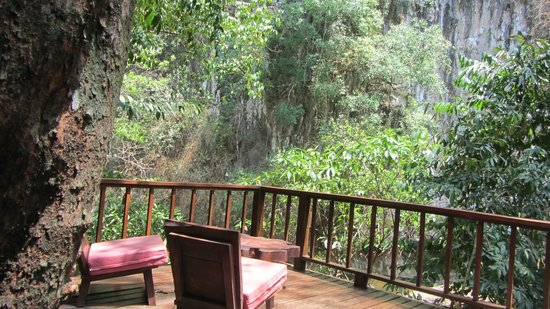 Our Jungle House: view sunshine treehouse