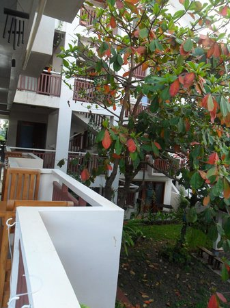 Agos Boracay Rooms + Beds: view from second floor