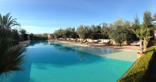Manzil La Tortue : Autre vue de la piscine