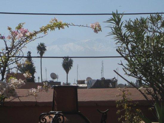 Riad Miski: view from terrace