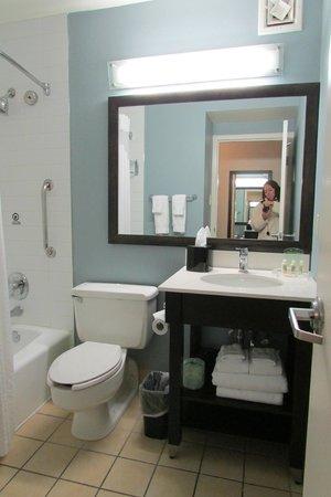 Beach House, A Holiday Inn Resort: the bathroom-clean!