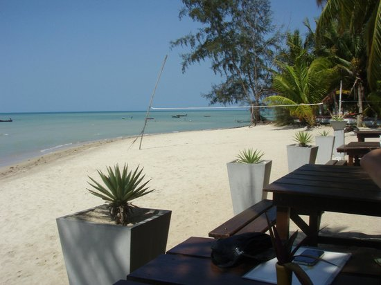 Phangan Rainbow Bungalows : Bar direkt am Strand