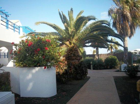 HL Paradise Island : une des allée de l'hôtel où se trouvent les appartements