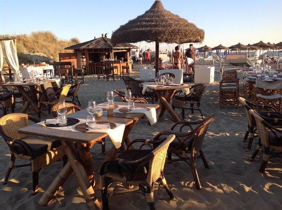 Tirrenia, Italia: eventi musica dal vivo cena sulla spiaggia