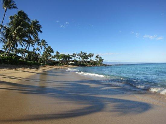 Napili Surf Beach Resort : Gorgeous beach