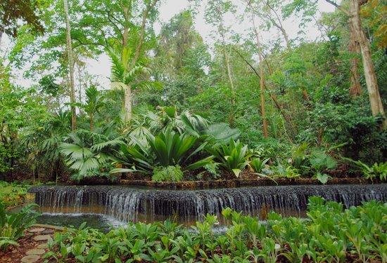 Emejing Indoor Garten In Singapur Gallery - Ideas & Design ...