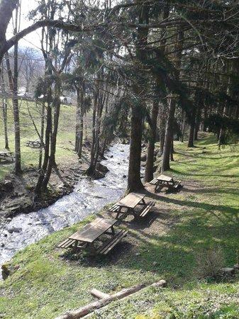 Ristorante Badia di Moscheta: Scorcio dal gazzebo