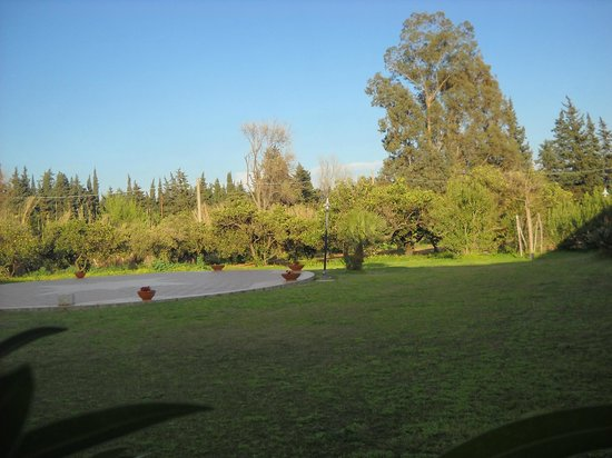 Hotel Ristorante Domu Incantada: Giardino fotografato durante una colazione all'aperto