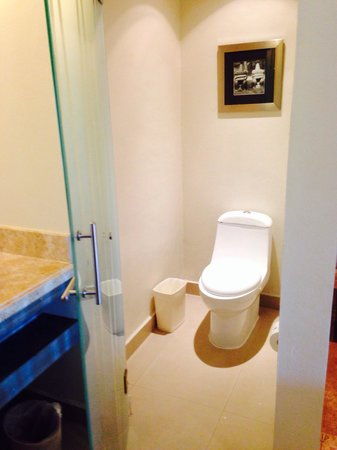 Secrets Silversands Riviera Cancun: Water closet
