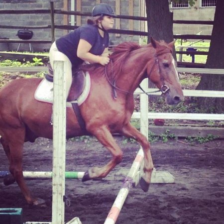 Bronx Equestrian Center