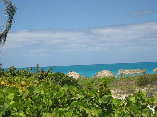 Melia Las Dunas : Vue sur la mer
