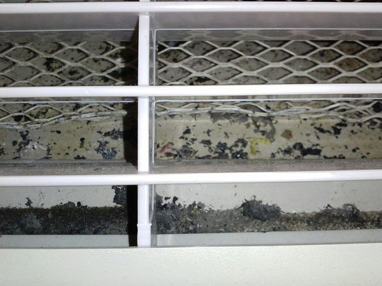 Days Inn Sarasota - Siesta Key : Don't look inside your rooms A/C unit, you just might see a disgusting Health Hazard.  Did I jus