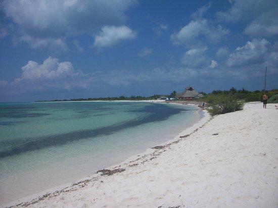 Tours Plaza - Day Tours: Beach Area
