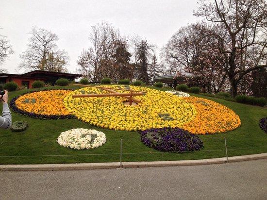 Flower Clock: Peccato il tempo nuvoloso