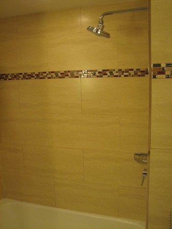 PULLMAN Miami Airport hotel: Shower.