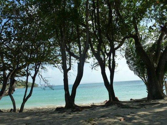 Sugarapple Inn : View From Beach Cottage