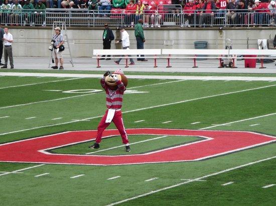 Ohio Stadium: Brutus