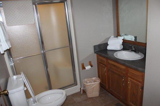 Tree Tops Resort : shower & tub in bathroom