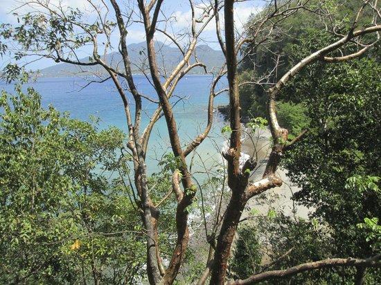 Secret Bay : View from Ti-Fey Bungalow