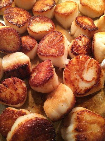 Cafe Adam Restaurant : day boat scallops, Scituate MA from Berkshore