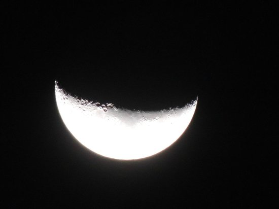 Tulip: A pretty crescent moon as we walked out.
