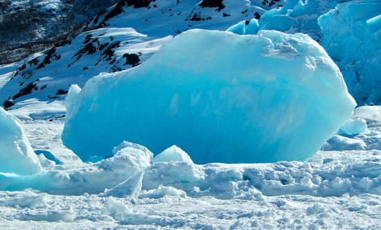 Portage Glacier : One of the many blue ice boulders that has broken off the glacier in the winter months.