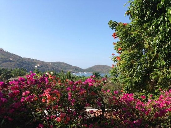La Quinta Troppo : View from breakfast area