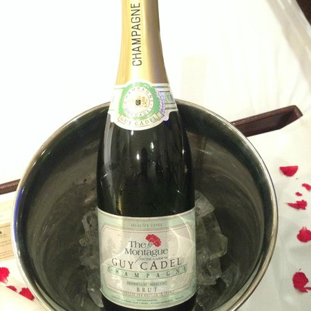 The Montague on The Gardens: Rico champagne