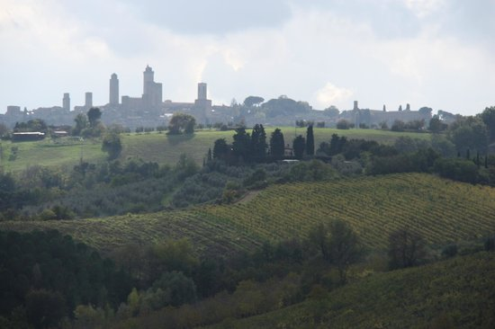 Walkabout Florence Tours: San Gimignano - the highest point