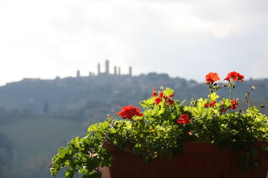 Walkabout Florence Tours: View from wine tasting