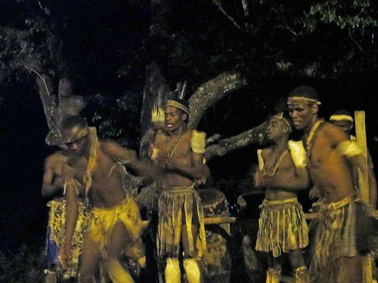 Jungle Junction: The entertainment