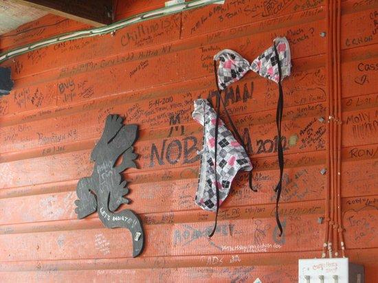 Wet Lizard : Wall decorations
