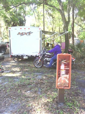 Manatee Hammock Campground: Getting ready for a nice ride