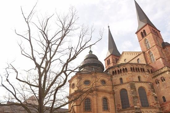 St. Peter's Cathedral (Dom): out side of dom in spring time