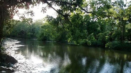 Hacienda Jacana : Pond
